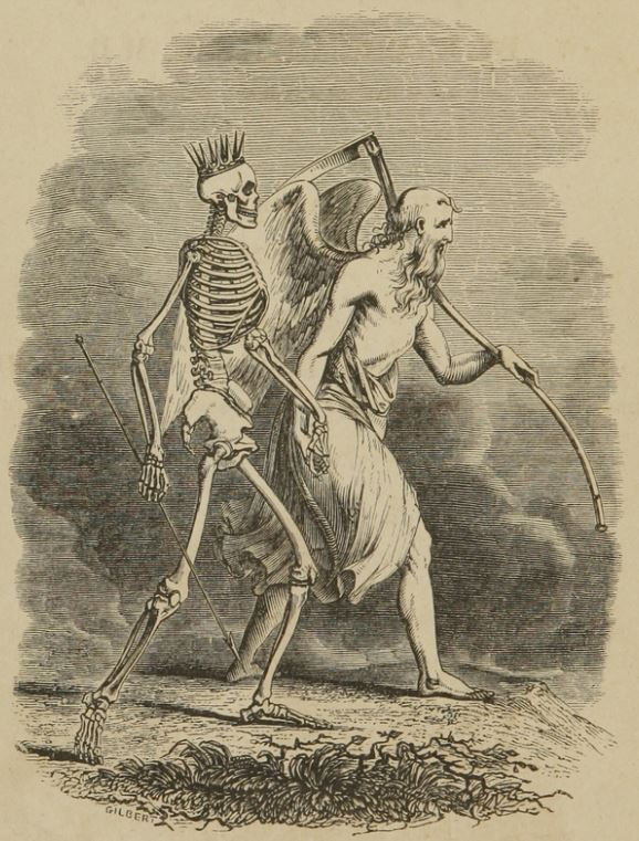 From - A System of Human anatomy, General and Special, by Erasmus Wilson 1847 Philadelphia: Lea and Blanchard