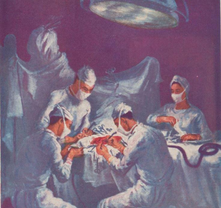 Marion Greenwood Neurosurgery